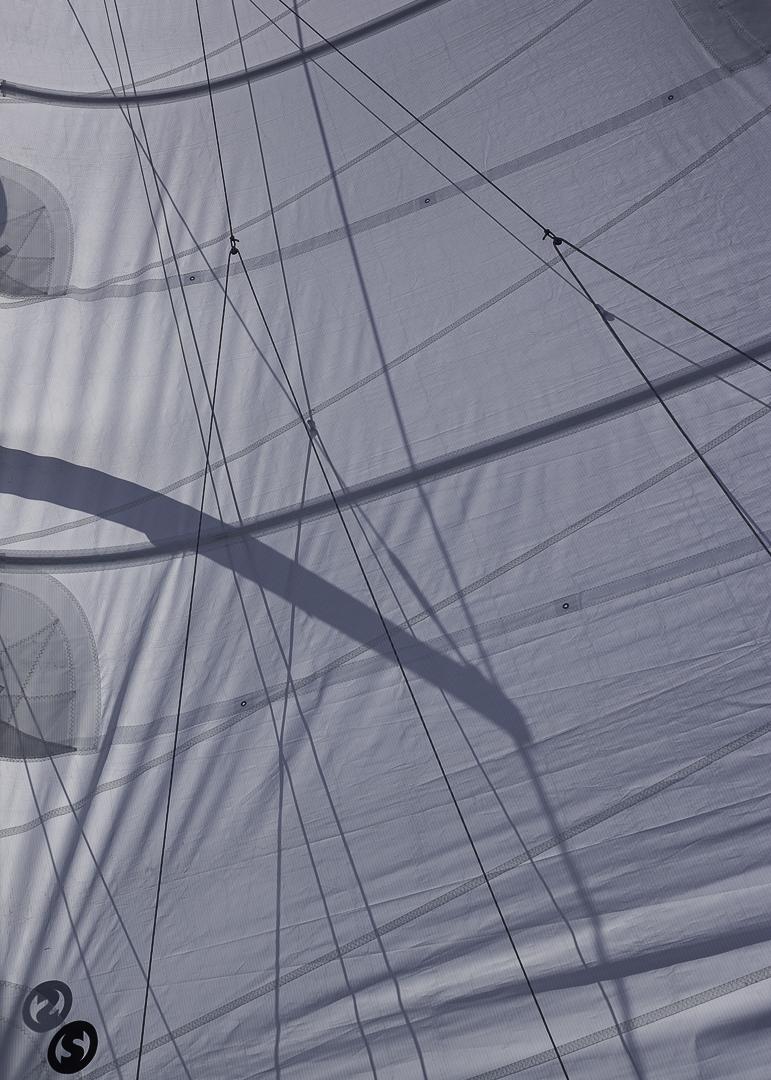 Selkie Sail